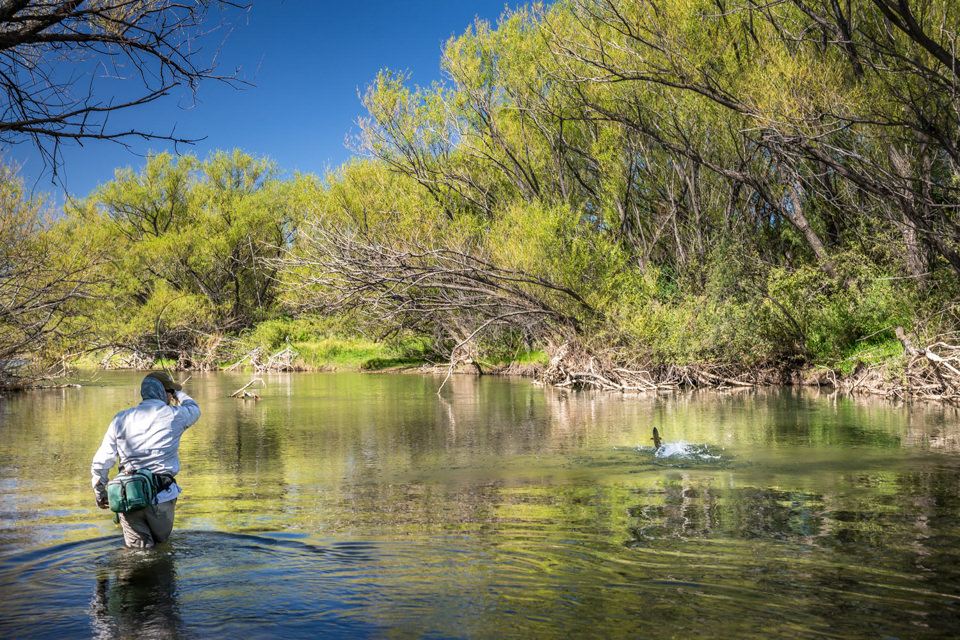 patagonia river guides quemquemtreu 34