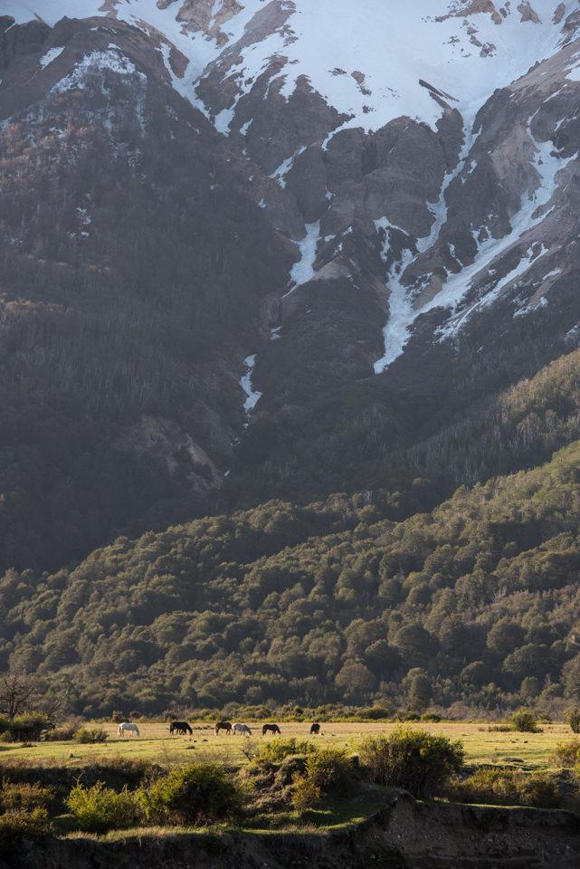 patagonia-river-guides-tres-lagos-38