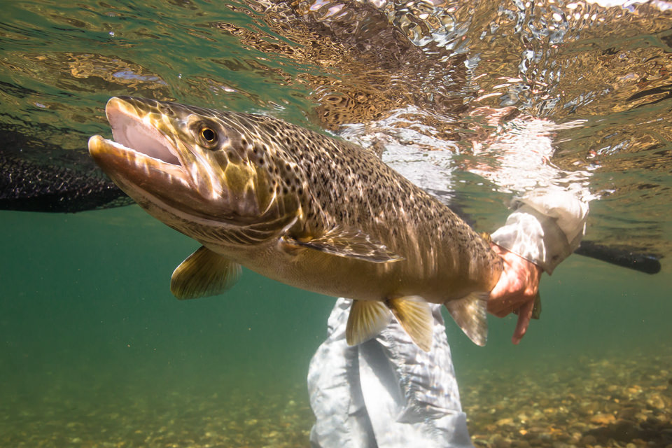 prg-north-fly-fishing-062