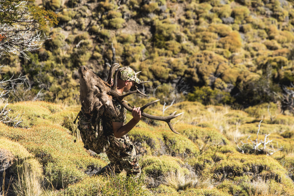 patagonia-argentina-stag-hunting-031
