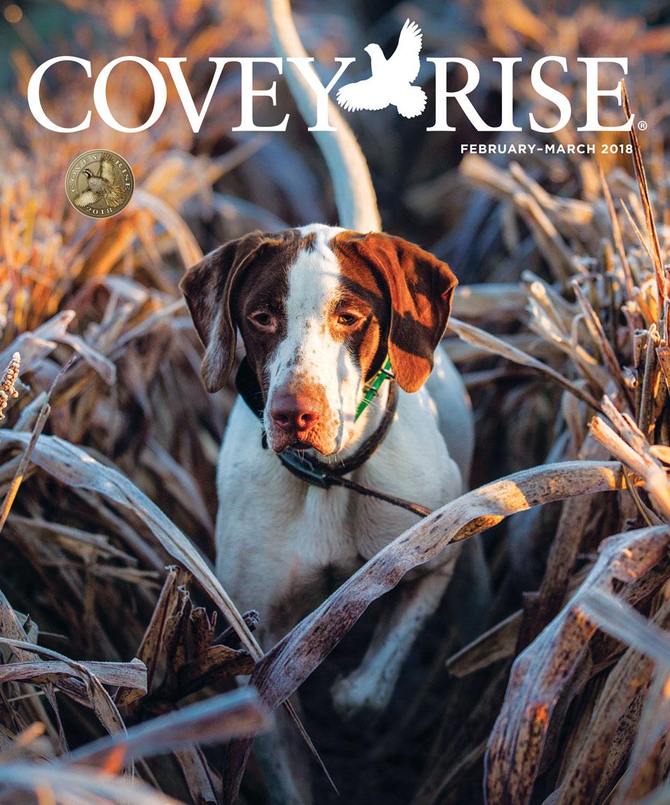 Covey Rise pt.1